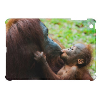 Orangutan mother and baby iPad mini case