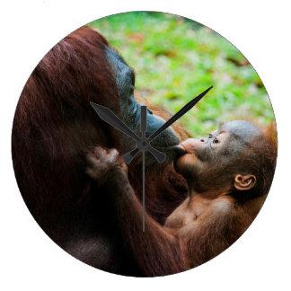 Orangutan mother and baby large clock