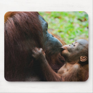 Orangutan mother and baby mouse mat