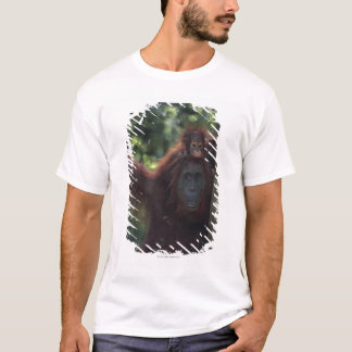 Orangutan Mother with Baby T-Shirt