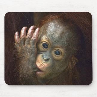 Orangutan Mouse Mat