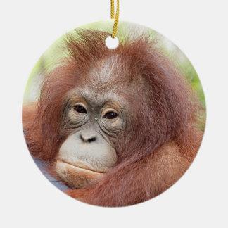 Orangutan Orphan Dr. Ann Round Ceramic Decoration