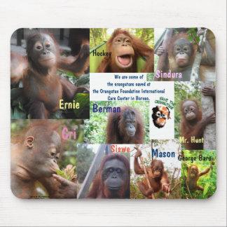 Orangutan Orphan Rescue Mouse Mat