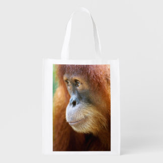 Orangutan Profile Reusable Grocery Bag