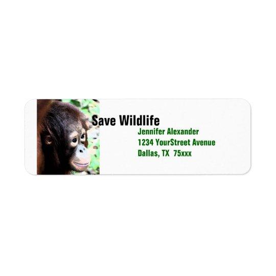 Orangutan Save Wildlife