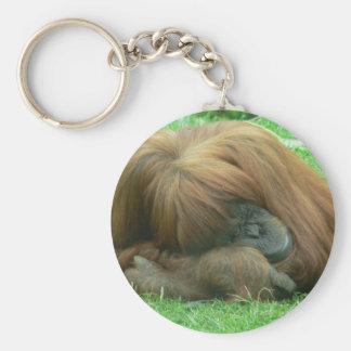 Orangutan Snoozing Keychain