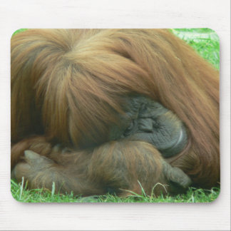 Orangutan Snoozing Mouse Pad