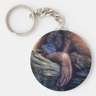 Orangutan study basic round button key ring