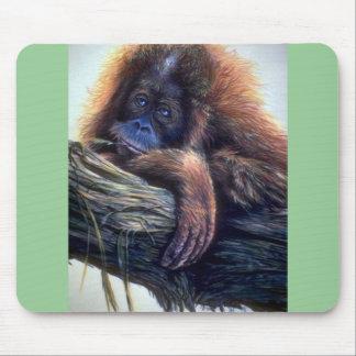 Orangutan study mouse pad