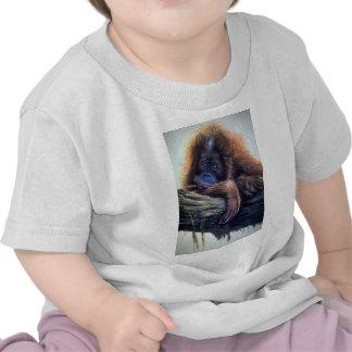 Orangutan study t shirts