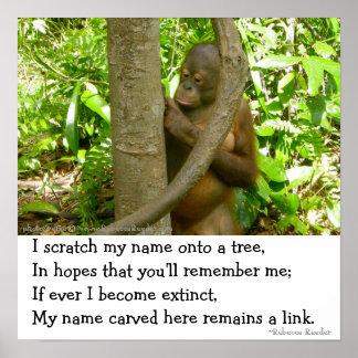 Orangutan Tribute Posters
