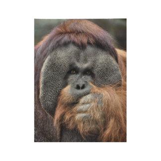 Orangutan Wood Poster