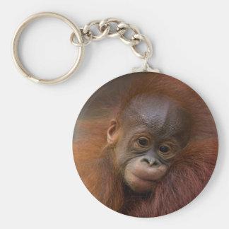 Orangutang baby basic round button key ring