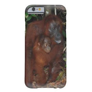 Orangutans Mother and Baby iPhone 6 Case