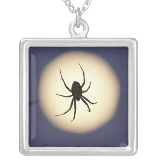 Orb spider on web with full moon, in south silver plated necklace