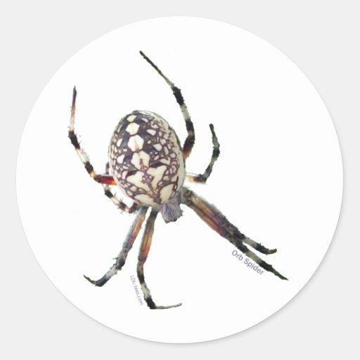 Orb Spider Stickers