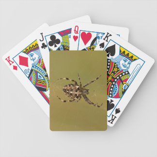 Orb-weaver Spider Bicycle Playing Cards