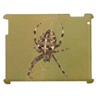 Orb-weaver Spider iPad Cases