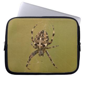 Orb-weaver Spider Laptop Sleeve