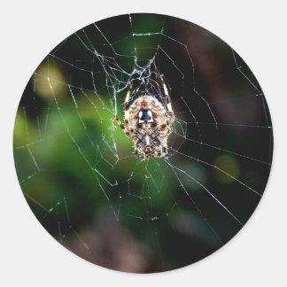 Orb Weaving Garden Spider Round Sticker