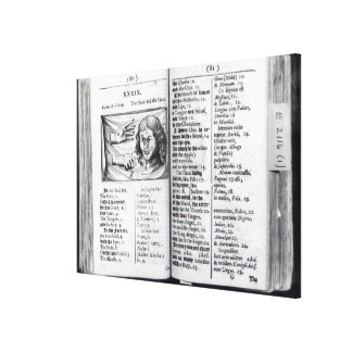 'Orbis Sensualium Pictus' Canvas Print