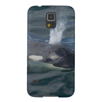 Orca blowing galaxy s5 cases