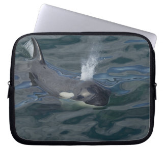 Orca blowing laptop computer sleeve
