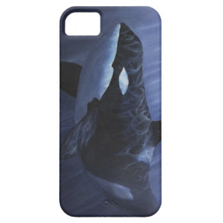 Orca Blues - iPhone 5 Case