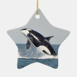Orca Breach Ornament 2