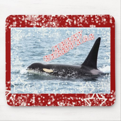 Orca Christmas Winter Wonderland Holiday Mouse Pads