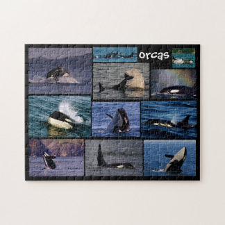 Orca Collage Puzzle