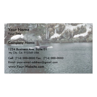 Orca in Prince William Sound Pack Of Standard Business Cards