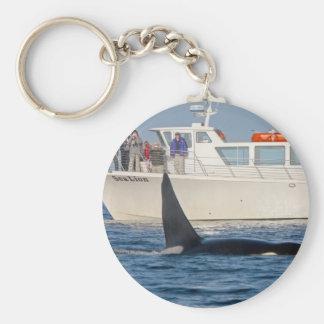 Orca Killer Whale -transient, washington Basic Round Button Key Ring