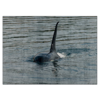 Orca on the hunt cutting boards