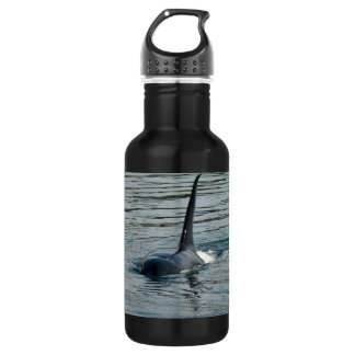 Orca on the hunt 18oz water bottle