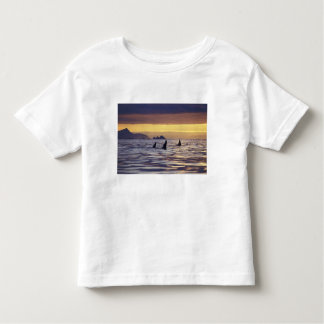 Orca or Killer Whales Toddler T-Shirt