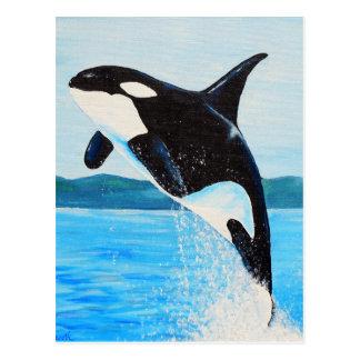 Orca Postcard