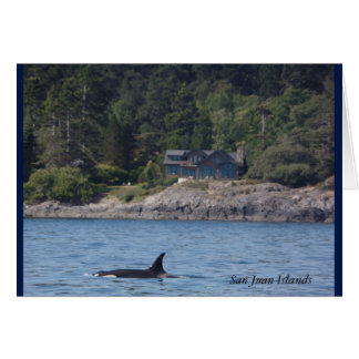 Orca San Juan Islands Washington Killer Whales Card