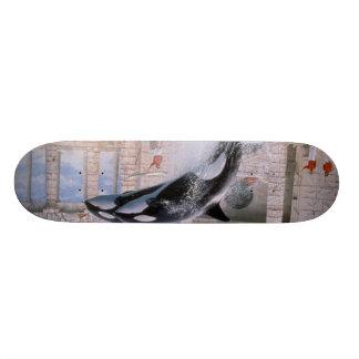 Orca Skate Deck