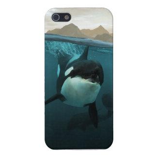 Orca underwater iPhone 5 case