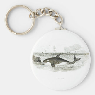 Orca Whale #13 Killer Whale Keychains