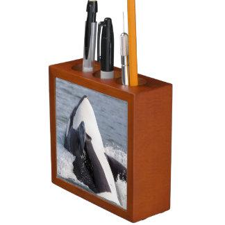 Orca whale breaching desk organiser