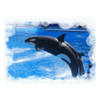 "Orca Whale 5"" X 7"" Invitation Card"