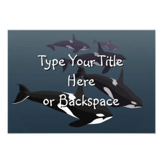 Orca Whale Invitations Personalized Whale RSVP