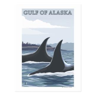Orca Whales #1 - Gulf of Alaska Postcard
