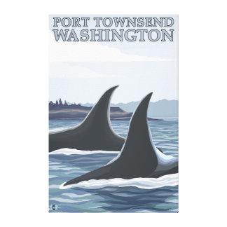 Orca Whales #1 - Port Townsend, Washington Canvas Print