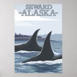 Orca Whales #1 - Seward, Alaska Posters