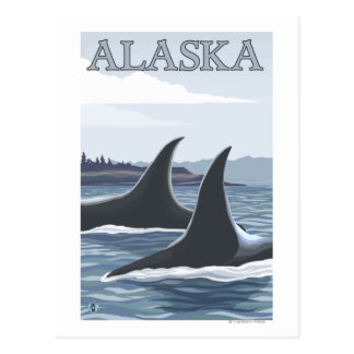 Orca Whales #1- Vintage Travel Poster Postcard
