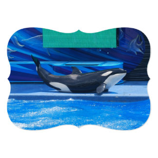 Orca Whales Personalized Announcements