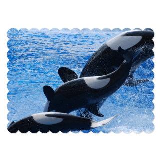 Orca Whales 13 Cm X 18 Cm Invitation Card